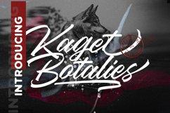 Kaget Botalies Script Product Image 1