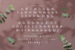 Web Font Adiwarna Product Image 4