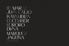 Greyst - Elegant Ligature font Product Image 2