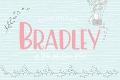 Bradley- A Fun Caps Font Product Image 1