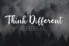 Web Font Tanzania Script Font Product Image 2