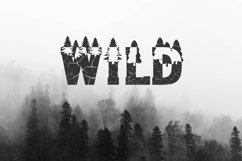 Forest Outdoors Font Product Image 2