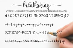 Breathaking script Font Product Image 3