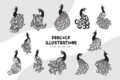 Peacock Illustrations Product Image 1