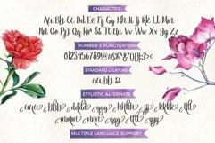Web Font Reebiolla Brush Font Product Image 2