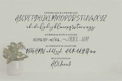 Bon Brott - A Handwritten Script Font Product Image 3