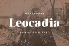 Leocadia Font Product Image 1