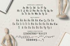 Web Font Newolfe Display Font Product Image 4