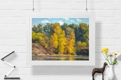 Autumn trees - Wall Art - Digital Print - Home Decor Product Image 1