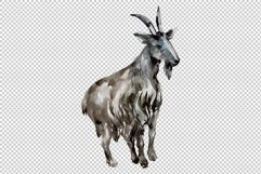 Agriculture goat Watercolor png Product Image 4