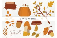 Hand drawn fall elements - autumn clipart, woodland elements Product Image 4
