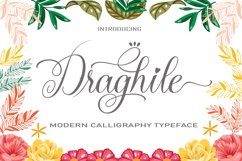 Draghile Product Image 1