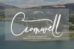 Cromwell 3 Fonts Product Image 1