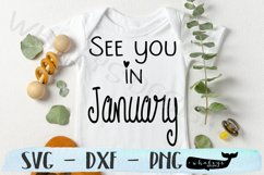 See you in January - Baby, Pregnancy Announcement Product Image 1