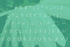 Flowered handwritten summer font in ttf, otf Product Image 2