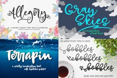 Billy Bot Bundle 4 - Snazzy Scripts Font Bundle! Product Image 2