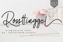 Rossttingel Product Image 1