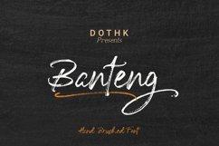 Banteng script Product Image 3