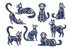 Day animals. Dia de los muertos, cats and dogs skulls, skele Product Image 1