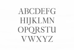 Adallyn Serif Font Family Pack Product Image 2