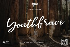 Brave Youth Script Typeface Product Image 1