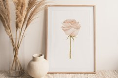 Boho rose printable, Digital rose poster, Floral wall print Product Image 3