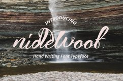 nidewoof font Product Image 1