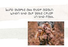 Fall Breeze - A Fun Handwritten Font Product Image 3
