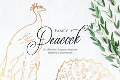 Fancy Peacock Collection Product Image 1