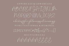 Baleryna taylor script font-signature font-Handwritten Product Image 3
