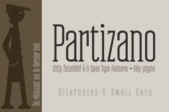 Partizano Serif Product Image 5
