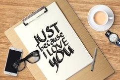 Web Font Typefloss Handmade Typeface Product Image 5