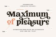 Creative Vintage Serif & Script fonts Product Image 3