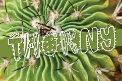 Web Font Thirsty Cactus - A Silly Cacti Font Product Image 3