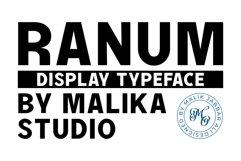 RANUM TYPEFACE Product Image 1