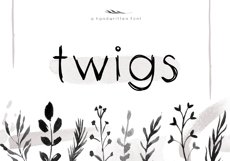 Twigs - A Handwritten Scribble Font Product Image 1