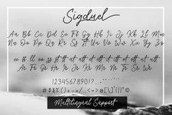Sigduel   Signature Font Product Image 3
