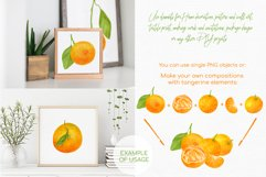 Tangerines - Hand drawn Watercolor clipart elements 300 DPI Product Image 3