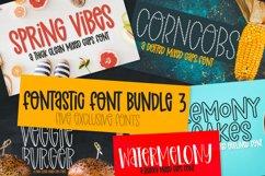 A Fontastic Bundle - Volume 3 - 5 New Fonts! Product Image 1