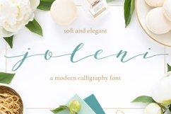 Joleni Font - modern elegant calligraphy Product Image 1