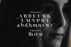 Anya Tamy - Classic Serif Font Product Image 12
