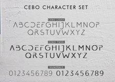 Cebo Typeface Product Image 5