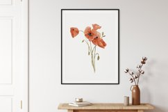 Watercolor Poppy Wall Art, Poppy Wall Print, Plant Poster Product Image 2