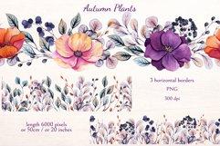 Autumn Plants Product Image 5
