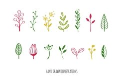 Floral botanical doodle illustrations set Product Image 3