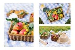 Summer picnic Bundle Product Image 2