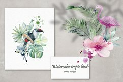Tropical summer. Watercolor set. Product Image 3