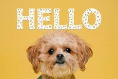 Dog Paw - Pet Font Product Image 3