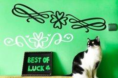 Web Font Lucky Dingbats - A Dingbat St Patrick's Day Font Product Image 3