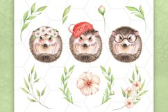 Watercolor hedgehogs Product Image 3